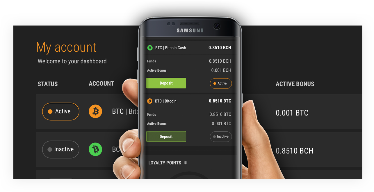 Bitcoin Cash Launched in Cloudbet