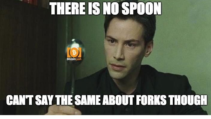 Forks are real