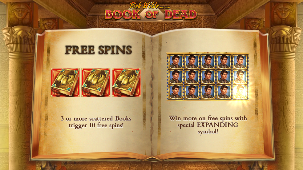Book of Dead bitcoin slot